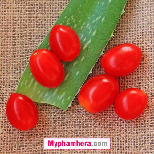 Cách làm trắng da bằng nha đam cà chua đậu lăng mỹ phẩm hera