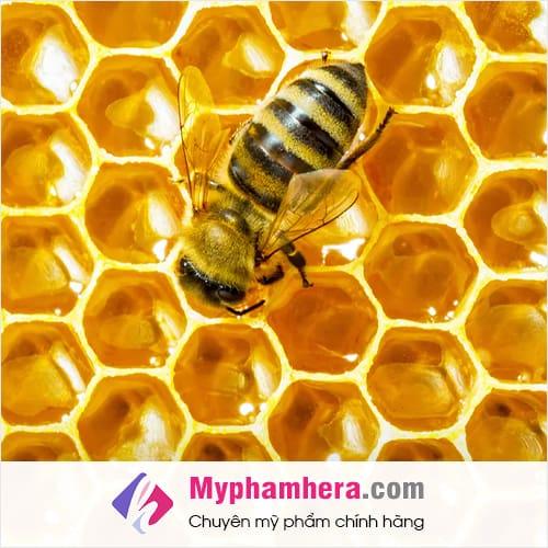 mật ong là gì mỹ phẩm hera