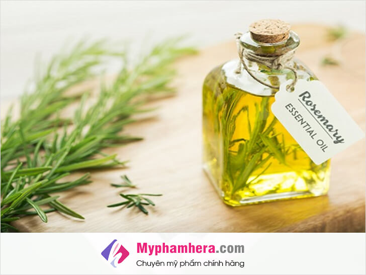 cách khử mùi hôi cơ thể bằng cây hương thảo mỹ phẩm hera