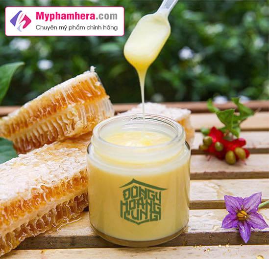 hướng dẫn sử dụng sữa ong chúa tươi hoa rừng thượng đỉnh myphamhera.com