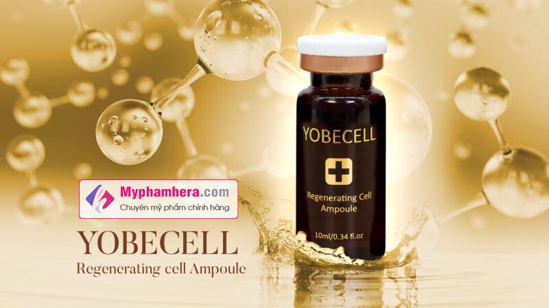 tinh chất tái tạo da tế bào gốc yobecell myphamhera.com