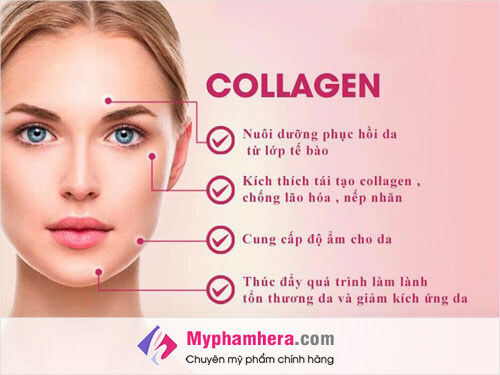 Bổ sung Collagen cho cơ thể