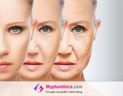Nguyên nhân gây lão hóa da